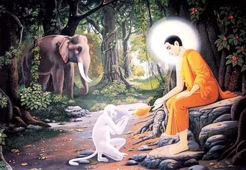 佛陀的一天是怎么度过的