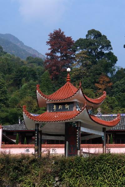 佛教禅林与山林意思一样吗