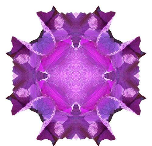 宗喀巴大师上师瑜伽法 修《兜率天内院百尊赞》法门的利益