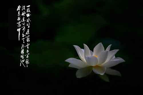 丹真绒布仁波切开示集 四 关于菩提心的开示